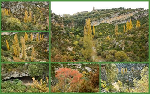 Colores del otoño en Rodellar