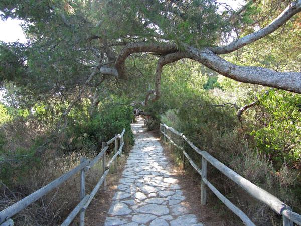 Camino en el Peñón de Ifach