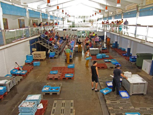 Subasta del pescado en Calpe