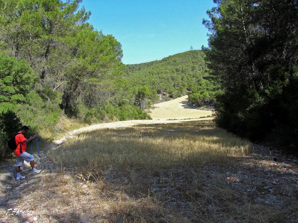 Campo de cultivo en Castejón de Valdejasa