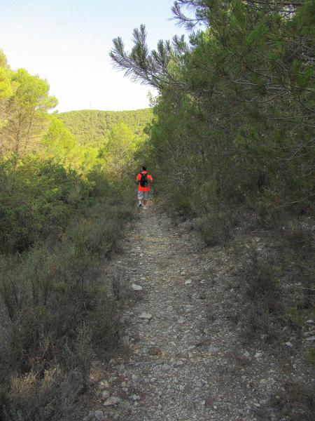 Senda de la ruta Castejón Val de Cantales