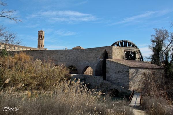 Acueducto, noria y molino del Monasterio de Rueda