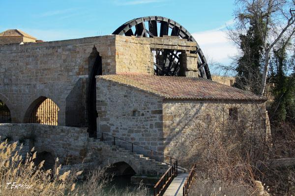 Infraestructura hidráulica del Monasterio de Rueda (Sástago)