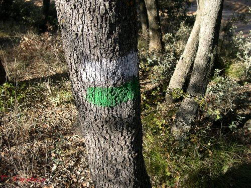 marca blanca y verde del sendero a las Tetas de Viana