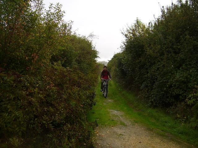 Bicicleta por camino Salburúa