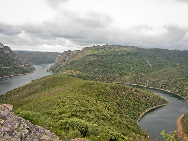 Monfragüe. Vistas desde el mirador del Cerro Gimio. El río Tajo