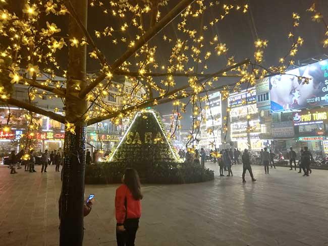 Sapa. Actividad nocturna, árbol con luces