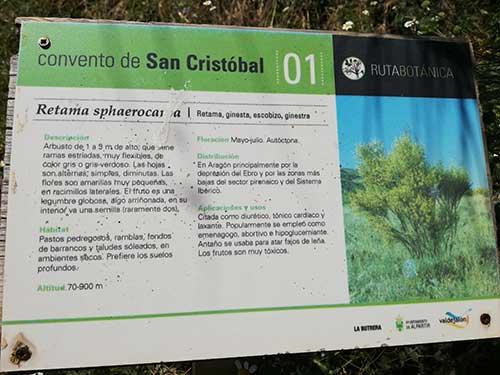 Cartel de la retama de la ruta botánica de Alpartir