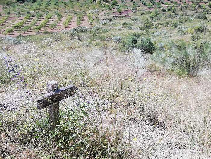 Señal de madera indicando el camino del descenso de la ruta botánica.
