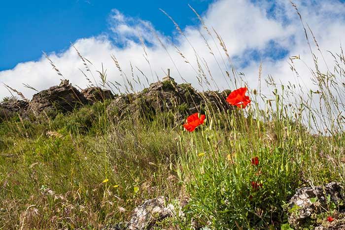 Llegando al punto geodésico del pico de San Cristobal