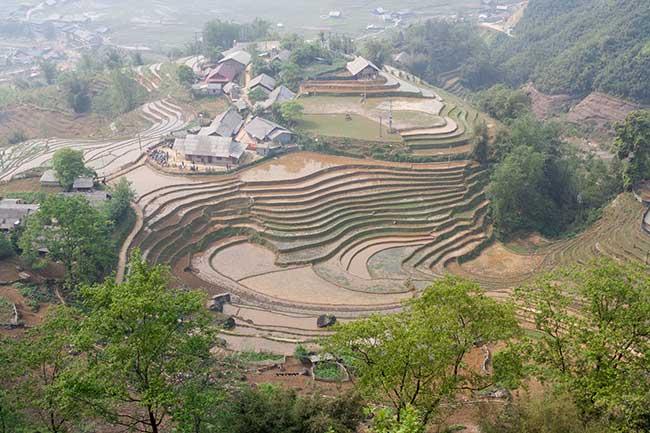 Terrazas de arroz vistas desde el comienzo del camino