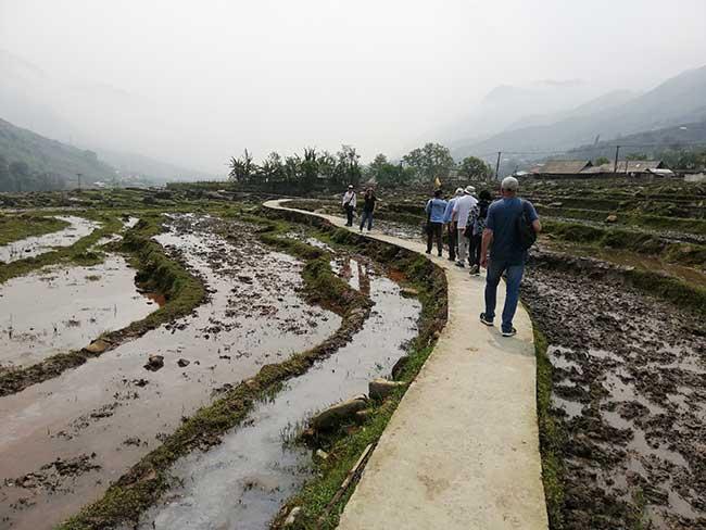 Camino atravesando terrazas de arroz